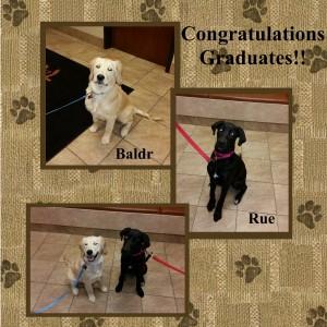 Graduates October 2015-001